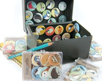Set of 6 Magnets--choose your designs! 60 Birds and Animals