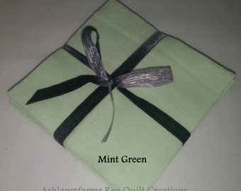 Solid MINT GREEN Flannel Squares, FLANNEL Fabric, Rag Quilt Squares, pick colors quantity and size, We Cut You Sew