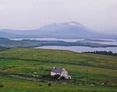Cottage By The Sea, Ireland Photography, Irish Farm, Irish House, Sheep Print, Green And Blue, Landscape Photo, Irish Decor Wall Decor