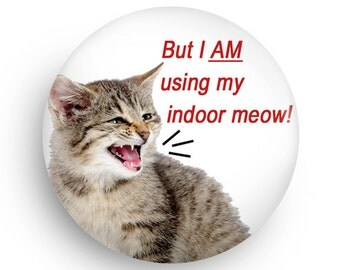 Funny Magnet, Funny Cat Fridge Magnet, Gift for Cat Owner, Gift for Coworker