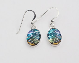 Brilliant Starling Feather Earrings, Sterling Silver Oval Drop Style, with Resin and Fine Art Image Transfer, Gift for Bird Lover