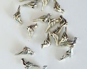 10 Small silver bird wren sparrow bead supplies findings stamping charm beading for earrings pendants jewelry aviary animal canary