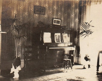 Original Vintage Interior Photograph Piano Potted Plants 1910s