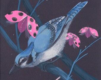 """Blue Jay - bird art print, 6"""" x 6""""."""