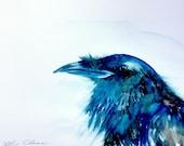 "Crow Watercolor Painting, Original Bird Art, Animal and Woodland Decor 9""x12"""
