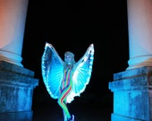 Knee length led dance wings