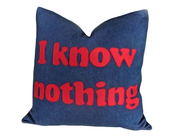 Funny Word Pillow, UNDATEABLE TV Show, I Know NOTHING Pillow, Couch Cushion Cover, Man Cave Decor 20x20