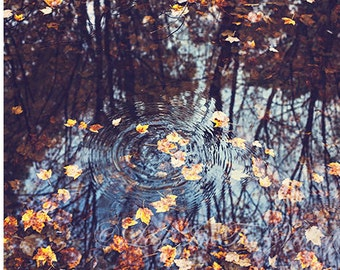 Nature Photography, Water Reflections, Rustic Wall Decor, Autumn Photo, Fall Leaves, Moody Art, Fine Art Photograph, Orange, Brown, Blue