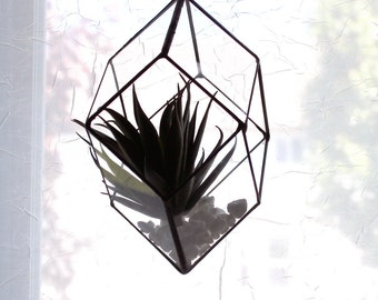 NEW Extra Large Modern Geometric Hanging Glass Terrarium - Rhombic Dodecahedron  -Black Finish- Stained Glass Decor - Home Decor