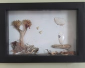WONDERFUL BEACH THEMED Shadow Box Fantastic gift Everything beachy Driftwood Shells seaweed and more  Sailboat theme