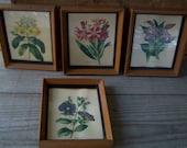 Small Vintage Botanical Prints ~ Four Framed Flower Prints