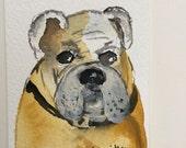 BULLDOG ORIGINAL watercolor, ACEO heavy watercolor paper