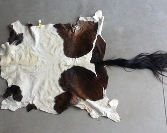 Bay Paint Horse Hide-  Soft tanned- Lot No. 97716Y