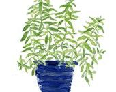 Art print Lemon verbena, Lemon verbena plant watercolor, herb art, kitchen decor, mothers day, minimalist art, herb art print, kitchen art