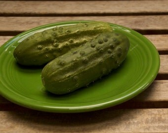 Sumter Cucumber Seeds - Perfect for Pickling and Preserves