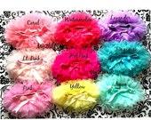Sale Tutu Bloomers. CHOOSE 1 TUTU BLOOMER, ruffles all the way around,Chiffon Baby Bloomer, Diaper cover, newborn, bloomer-ready to ship