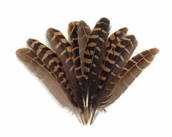 Partridge Feathers, 10 Pieces - Natural Brown Partridge Wing Feathers : 3342