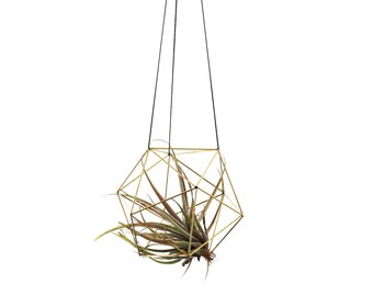 ORBIS / Modern Geometric Hanging Mobile I / Air Plant Holder / Himmeli