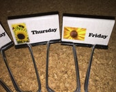 Sunflower Binder Clips Teacher Organization Clips Set of 5 Bright and Cheerful Sunflowers Days of the Week