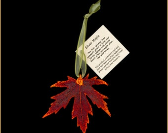 Real Iridescent Copper Silver Maple Ornamemnts with Ribbon and Hang Tag - Christmas Ornaments
