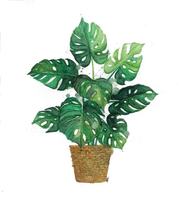 minimalist watercolor print: Plant