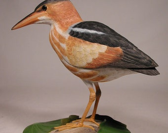 "9"" Least Bittern Hand Carved Wooden Bird Carving"