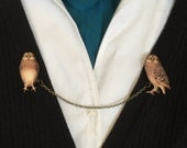 The Wise Owl Collar Clips