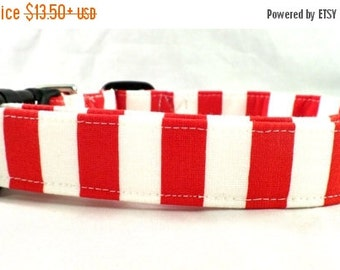 ON SALE Adorable Red and White Striped Dog Collar