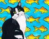 Original Watercolor Painting, Fish and Kitty