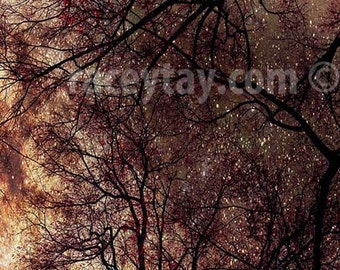 Rustic Wall Art, Nature Photography, Brown, Copper, Gold, Celestial, Tree Branches, Starry Night Sky, Surreal