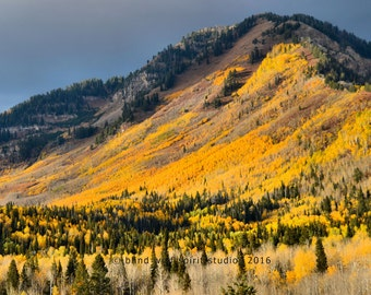 Autumn Fall Colors Photo, Mountain Photography, Fall Landscape Nature Photo