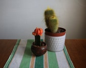 Vintage Swedish Handwovens: Cactus Way