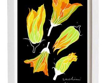 "Zucchini blossoms - Foodie art print - 11""x15"" - archival fine art giclée print"