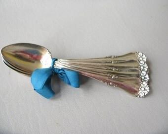 Vintage Silverplate teaspoons, set, Oneida, Kennwood, Fruit Orange, antique