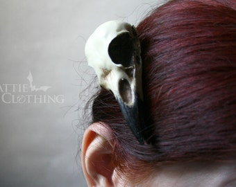 crow skull hair clip or magpie skull resin cast  goth witch gift