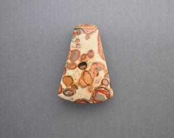 Stromatolite Fossil Jasper