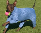 "UPF50 Sun Protection Suit for American Hairless Terriers, Chinese Crested, Xolos and all small dogs from 10"" - 22"""