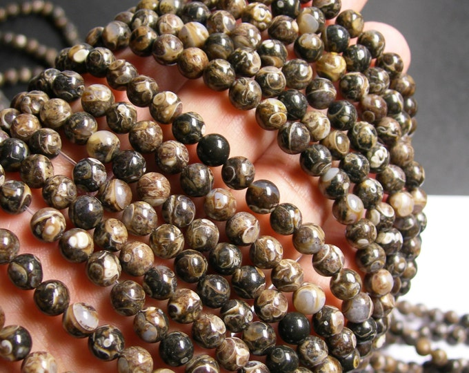 Turritella Agate  - 6mm round beads -  full strand - 64 beads - RFG486