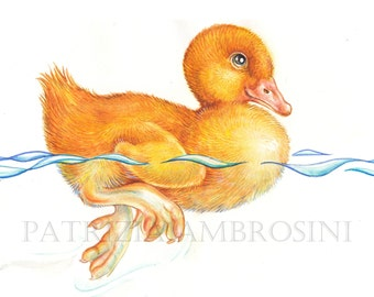 "Original 10""x8""  Watercolour DUCKLING .... . NOT A PRINT ..Original Painting Yellow"