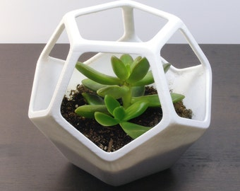 Cactus Planter Geometric Modern Decor Office Gift