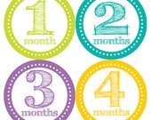 Baby Month Stickers, Monthly Girls and Boys Baby Bodysuit Stickers, Monthly Bodysuit Stickers, Milestone Stickers, Months 1-12 (The Riley)