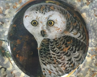 Owl decoupage plate 13 in