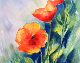 Orange California Poppies