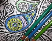 ON SALE KPM Doodles Coloring page Paisly1