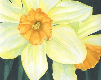 Daffodils, 8X10 Painting