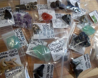 Fossil & Mineral Specimen Grab Bags - 5 Pieces