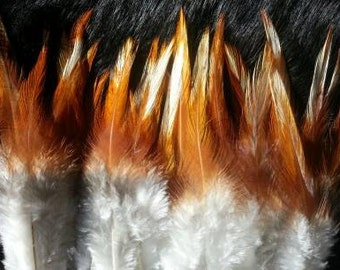 Cruelty Free Feathers - Natural Red Mix - Saddles - Lot of 25
