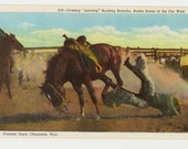 Vintage Cheyenne, Wyoming Unused Linen Postcard- Bucking Bronco, Cheyenne Rodeo- FREE US Shipping