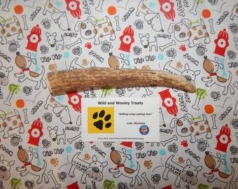 "Organic Large Elk Antler Dog Chew ""Made in Montana"" (Lot G13)"