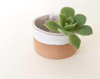 SOLO SILO prep bowl salt cellar or planter